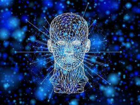 Was weiß unser Gehirn über die Wirklichkeit?