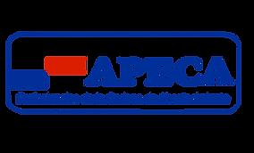 apeca-logo-300x182.png