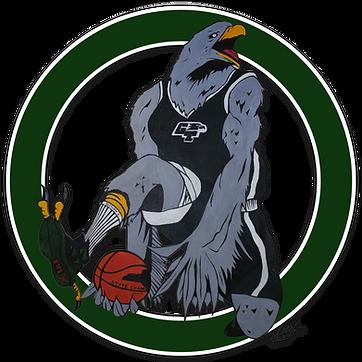 Basketball mascot with circle-shadow.png