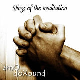 Wings of the meditation