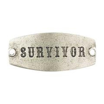 Small Sentiment | Survivor