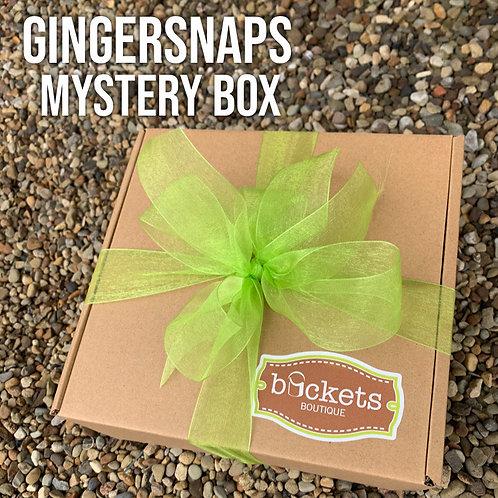 GingerSnaps Mystery Box