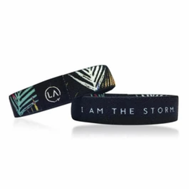 ReFocus Bands I am the Storm