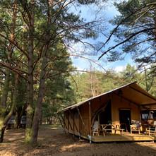 Namiot Safari Woody