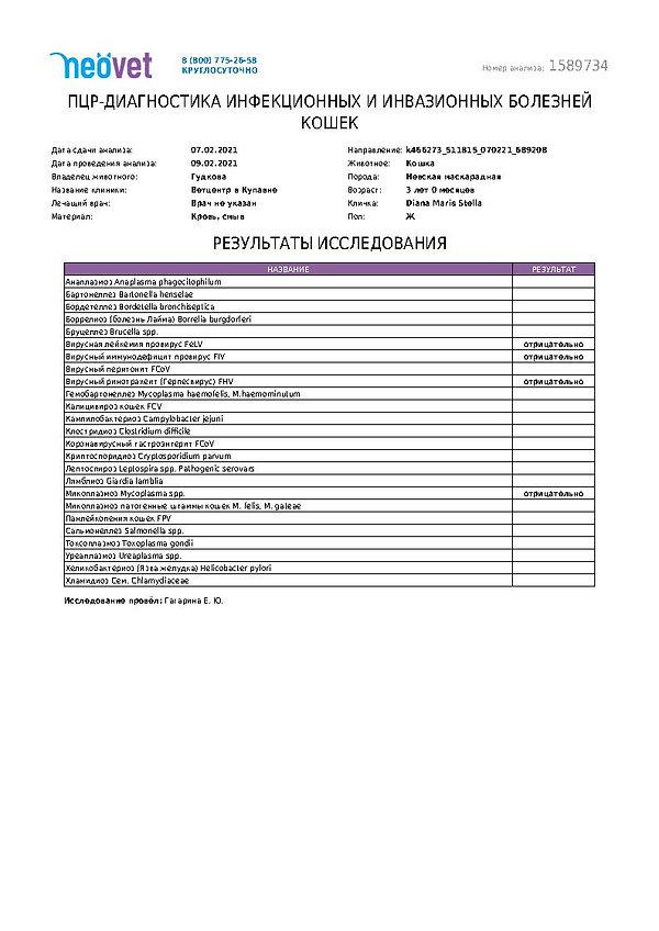 Diana FIV, FeLV, FHV (герпесвирус-ринотр