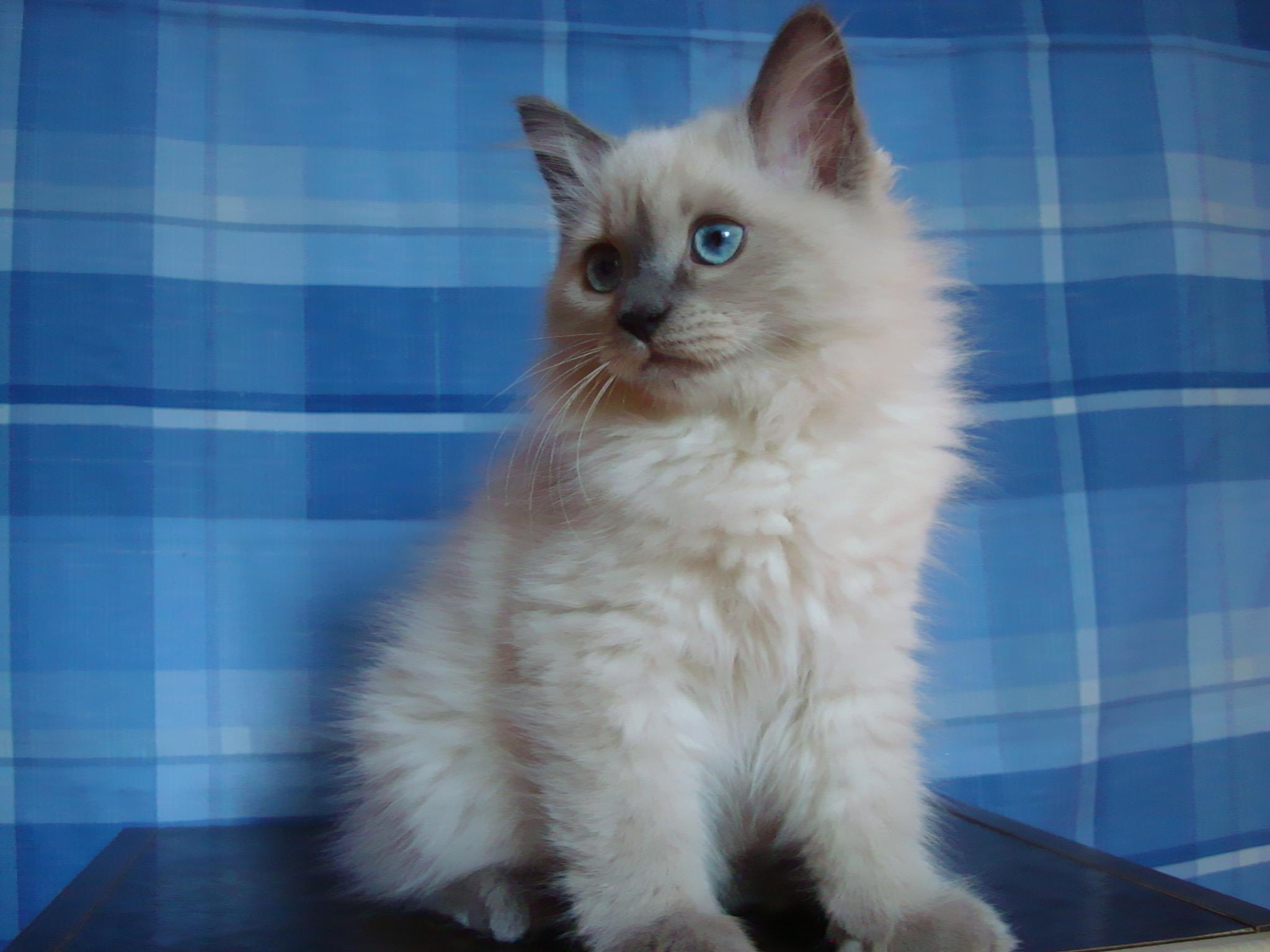 Dorothea Maris Stella 3 months