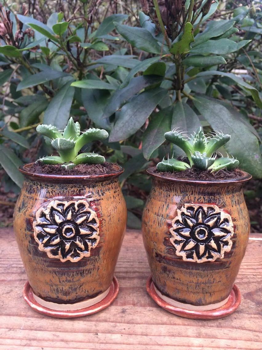 Amaco glazed planters