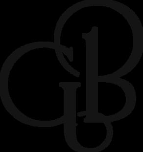 logo_antrasit.png