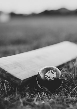 black-and-white-close-up-cricket-1614987