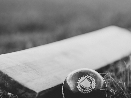 Cricket returns to the Hollow