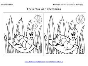 Encontrar las 5 diferencias