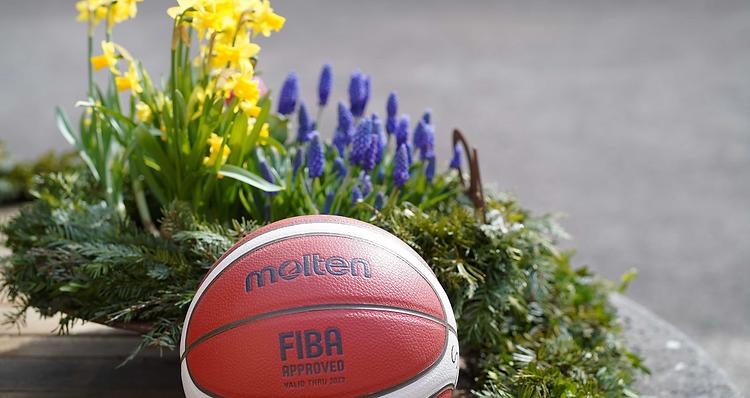 Basketball_Fruehling_edited.png
