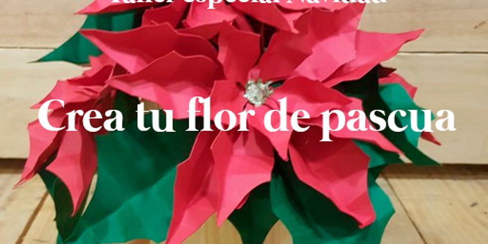 Crea tu flor de pascua - Poinsetia navideña