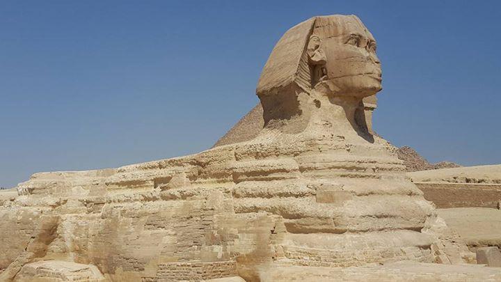 Sphinx upclose