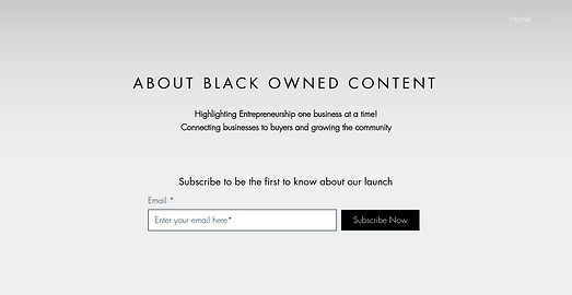 ashawna lane black owned content website