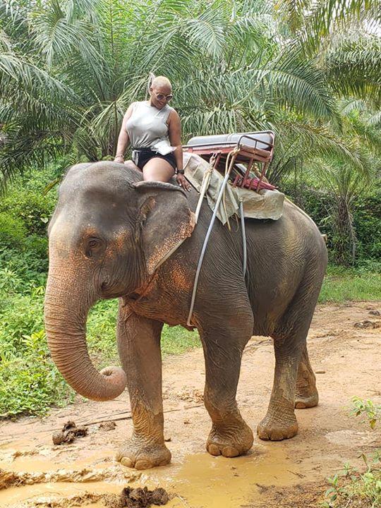 Elephant Trek in Phuket, Thailand