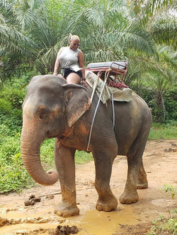Elephant Trek in Phuket, Thailand