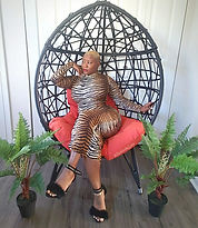ashawna lane egg chair orange pillow blo