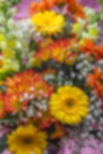 azalea-fall-flowers-280.jpg