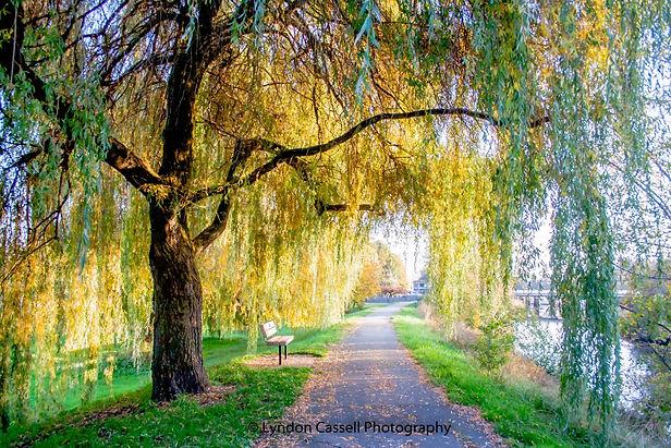 Port_Alberni_Landscape_Photographer.jpg