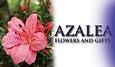 AzaleaLogo-Web.png