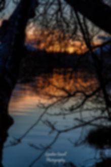 lcp-sunset-somass-river-mar26-2019-1131.