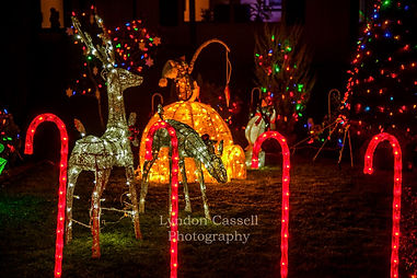 Christmas_Photos_Port_Albeni.jpg
