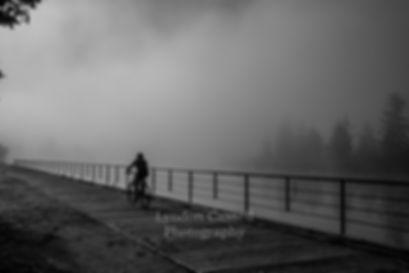 Fog_Port_Alberni.jpg