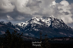 lcp-arrowsmith-mar24-2019-0459.JPG