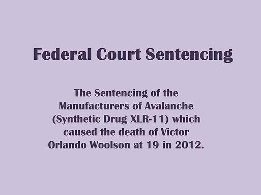 Federal Court Sentencing