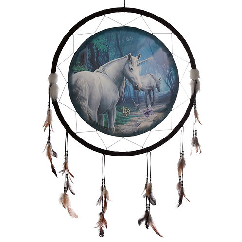 Decorative Lisa Parker The Journey Home 60cm Dreamcatcher Novelty Gift