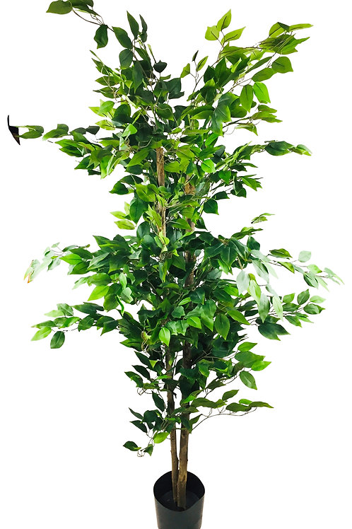 Artificial Ficus Tree With Pot 2m Shipping furniture UK