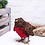 Thumbnail: Robin Planter (30cm) | Florist Sundries Supplies and Events UK