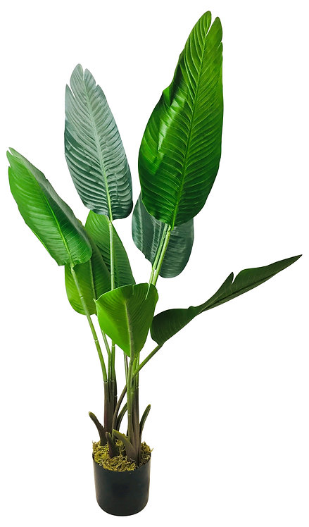 Artificial Travelling Banana Tree 112cm Shipping furniture UK