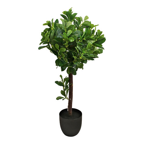 Artificial Tung Oil Ball Tree, 75cm Shipping furniture UK