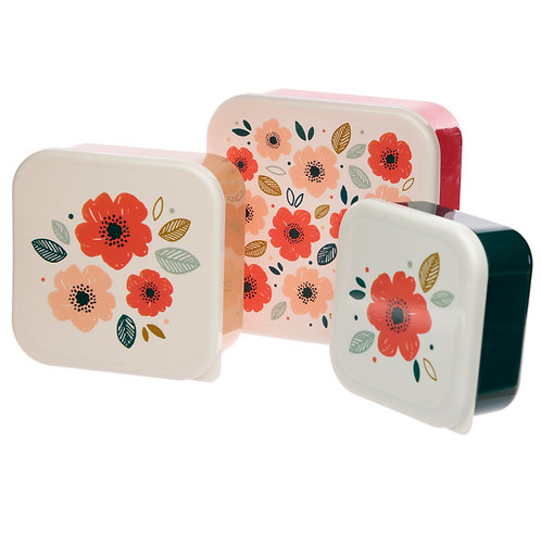 Poppy Fields Set of 3 Plastic Lunch Boxes (M/L/XL) Novelty Gift