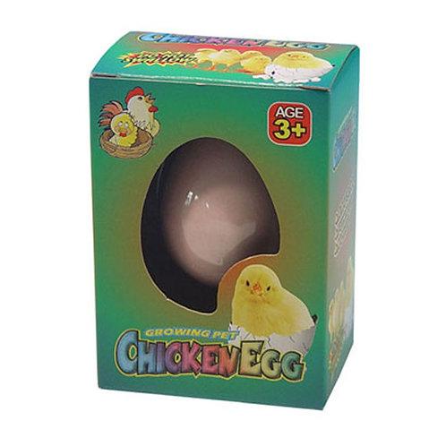 Novelty Gift Fun Kids  Hatching Chicken