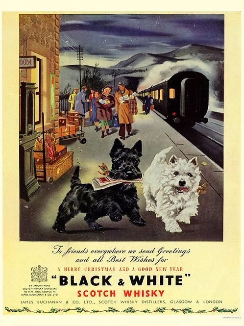 Black & White Scotch Whiskey Metal Sign Shipping furniture UK