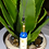 Party Wine Bottle Glass Keyring Keychain Blue