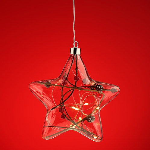 Decorative Hanging LED - Christmas Winter Berries Star Large Novelty Gift