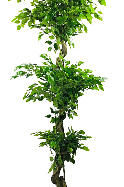Artificial Ficus Leaf Topiary Mini Leaves 175cm Shipping furniture UK