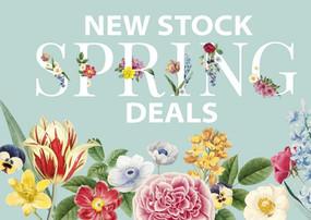 Spring 2021 Deals