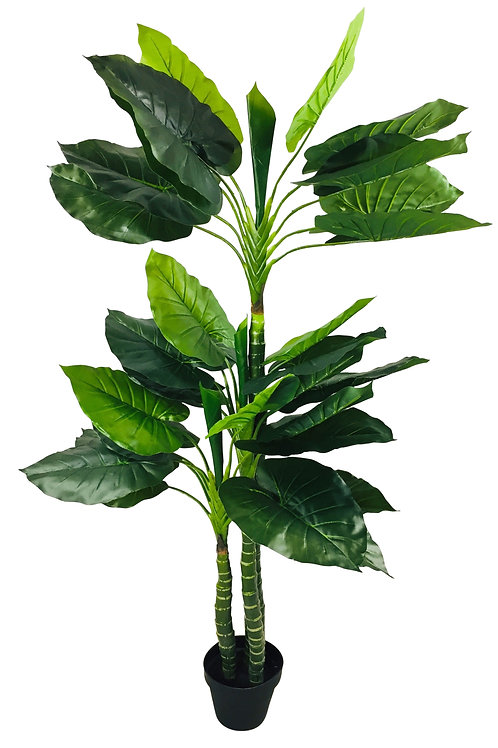 Artificial Taro Tree With 3 Trunks 150cm Shipping furniture UK