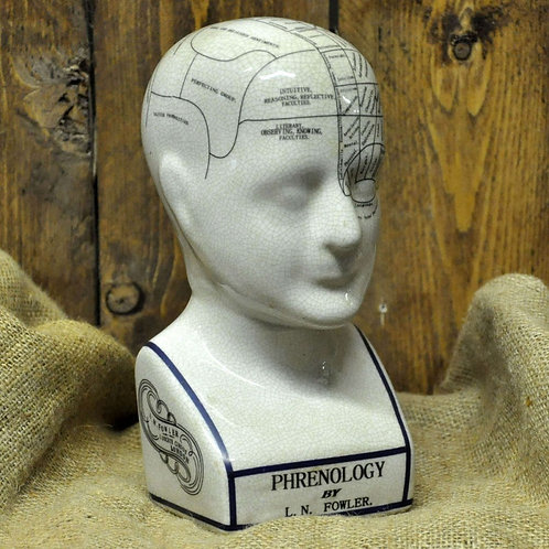Ceramic Phrenology Head 30cm Shipping furniture UK