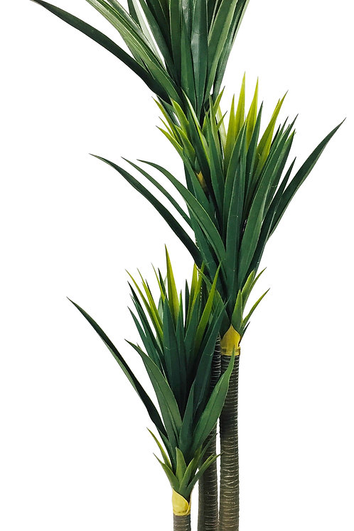 Artificial Yucca Plant 155cm Shipping furniture UK