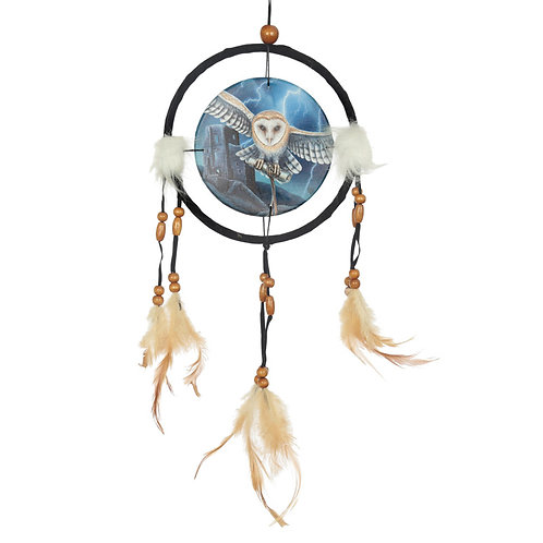Novelty Gift Decorative Heart of the Storm Owl Design Dreamcatcher Small