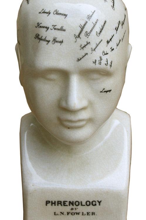 Small Ceramic Phrenology Head, 19cm Shipping furniture UK