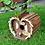 Thumbnail: Kingfisher Wooden Bird Hotel   Florist Sundries Supplies and Events UK