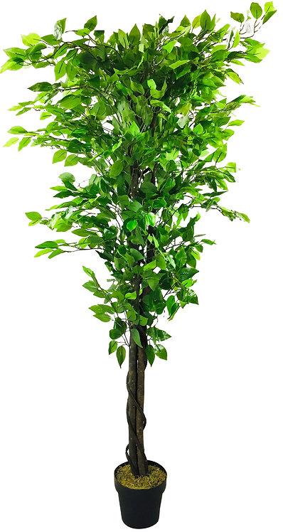 Artificial Ficus Tree 193cm Shipping furniture UK