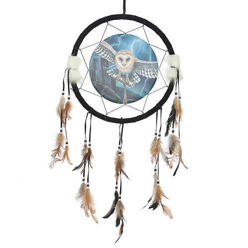 Decorative Heart of the Storm Owl Design Dreamcatcher Medium Novelty Gift